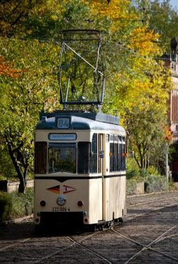 Berlin tram and autumn colours-0119